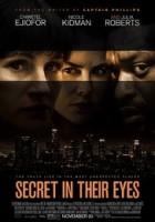 Secret in Their Eyes greek subs