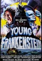Young Frankenstein greek subs
