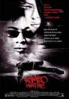 Romeo Must Die gr
