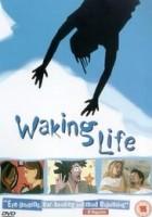 Waking Life 720p x264 HDTV iND